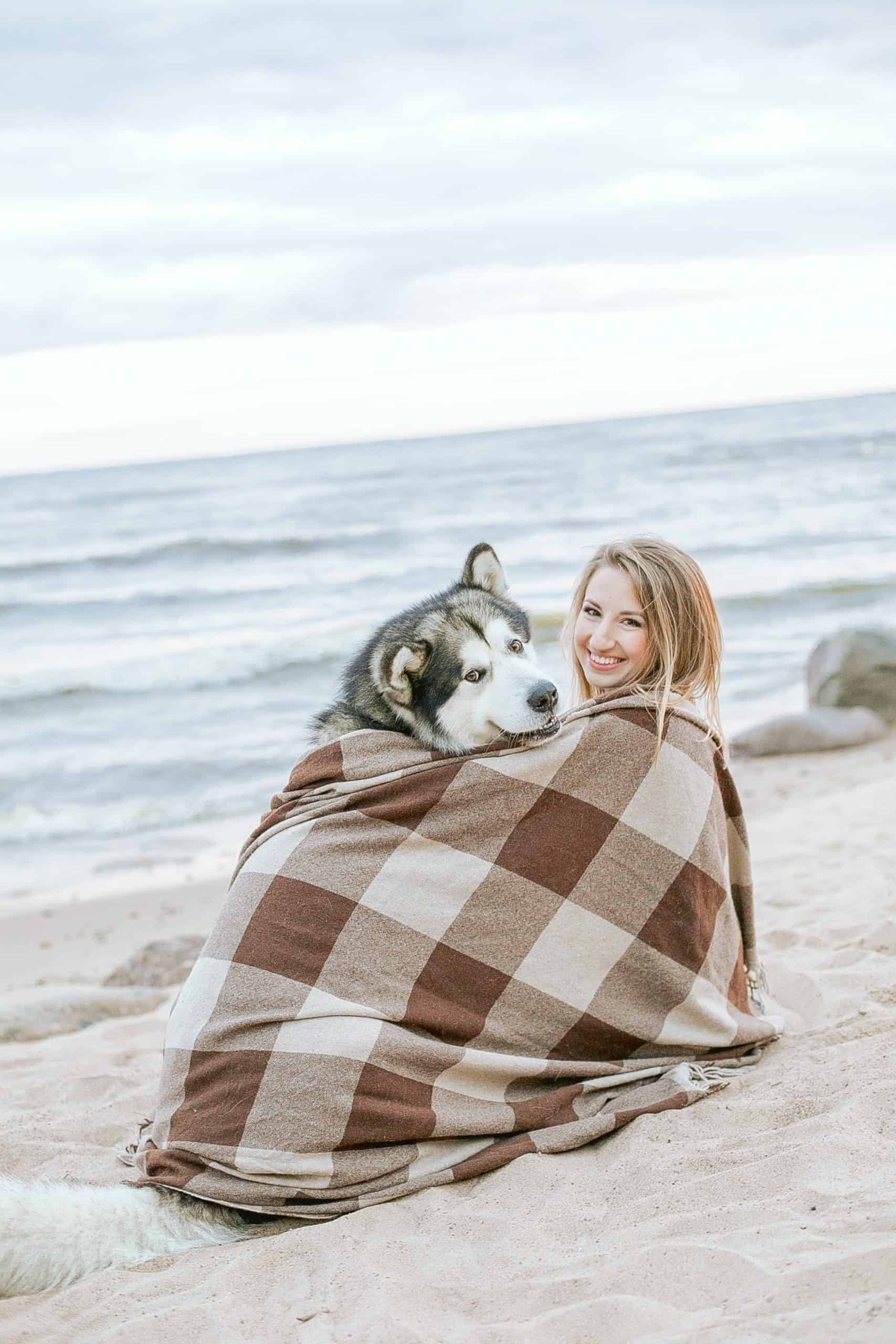 Why Should You Buy a Dog's Blanket?